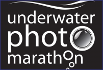 Underwater Photo Marathon 2015