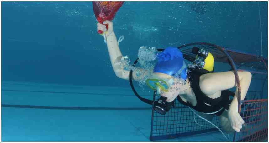 Rezultati otvorenog prvenstvo Srbije u podvodnim veštinama, Sombor 19.04.2015