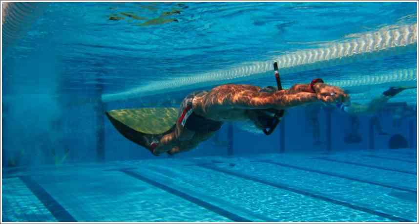 Rezultati otvorenog prvenstvo Srbije u brzinskom ronjenju i plivanju perajama - 21.06.2014